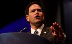 """Marco Rubio Thinks Evolution is a """"Mystery"""" 