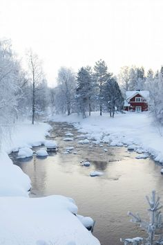 Lapland, a perfect winter scenery I Love Winter, Winter Snow, Winter Time, Winter Christmas, Lappland, Winter Magic, Winter's Tale, Winter Scenery, All Nature