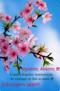 Good Morning, Easter, Plants, Gifts, Buen Dia, Presents, Bonjour, Easter Activities, Plant