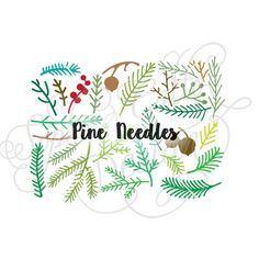 Winter Pine Needles branches, SVG DXF digital download file Silhouette Cricut vector graphics ClipArt Vinyl Cutting Machines Screen Printing