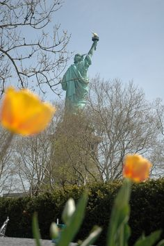 Lady Liberty and tulips. A Bit of Holland in the States. I Love America, God Bless America, Star Spangled Banner, Statues, Statue Of Liberty, Tulips, Holland, Beautiful Pictures, Blessed