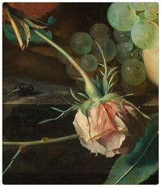 Jan van Huysum I Still Life with Flowers and Fruit (detail) from 1700 to 1749 Städel Museum, Dutch Still Life, Still Life Artists, Peach And Green, Art Plastique, Botanical Art, Oeuvre D'art, Art Oil, Flower Art