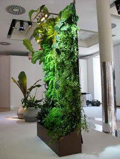 Patrick Blanc - Home vertical garden