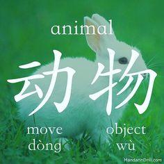#animal #rebus #calligraphy #mandarin #chinese