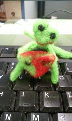 Praying Mantis Love Bug