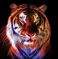 Tiger Fractal by Terrazzo on deviantART
