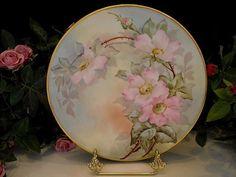 Outstanding Bavarian Wild Roses Plate/L.L.KIBBEY/PUTZKI