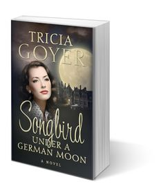 Betty and Frank team up against post-war Nazi influences and the two lovebirds' hearts may find the answers...in each other. But will they have a chance for their romance to sing? The truth will be revealed under a German moon.