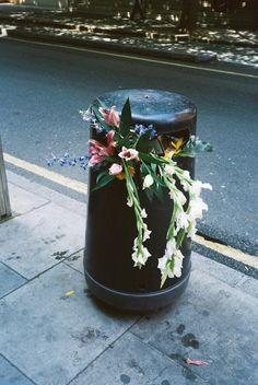flowers make bins just look so much nicer