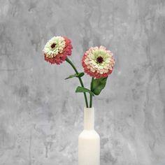 Zinnia fiore singolo, fiori di carta crespa