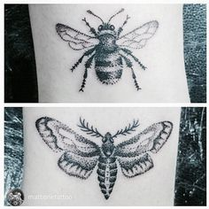 My beautiful Bumble bee and Moth dotwork tattoos by Mat Bone @ Octopus Tattoo, Derby UK