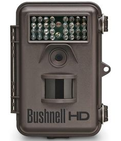 Bushnell 8MP Trophy Cam HD - Read our detailed Product Review by clicking the Link below