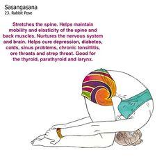 bikram yoga postures illustrated with real bodies Bikram Yoga Postures, Bikram Yoga Benefits, Yoga Poses, Namaste Yoga, Yoga Meditation, Free Yoga Videos, Sinus Problems, Hot Yoga, Yoga Teacher