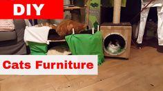 Cats Homemade Furniture - DIY - Guide The Catnip Mafia