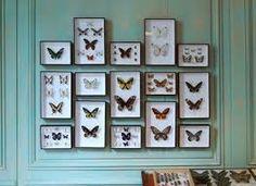 Afbeeldingsresultaat voor vlinders op muur
