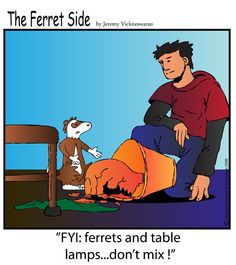 The Ferret's Side Cartoon