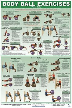 Ball exceises upper body and lower body