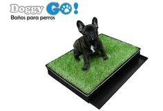 Paga S/.97.5 por Baño para perros Doggy GO.