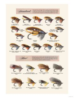 Vintage Fly Fishing Posters