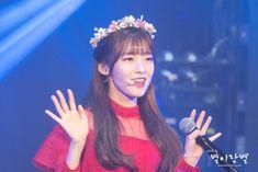 × SNS - 2 Flower Crown, Flowers, Fashion, Crown Flower, Moda, Floral Wreath, Fashion Styles, Florals, Floral Crown