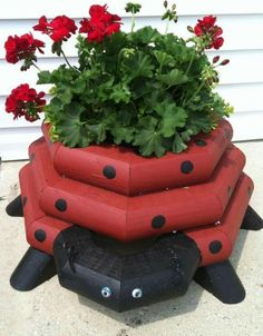 Lady bug plant holder