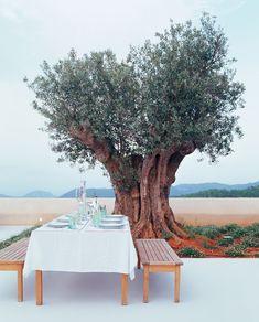 alfresco dining--ibiza