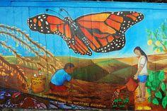 Ed Abillano: Today's Street Art - Monarch Turtle, Street Art, Animals, Animales, Tortoise, Animaux, Tortoise Turtle, Turtles, Animal