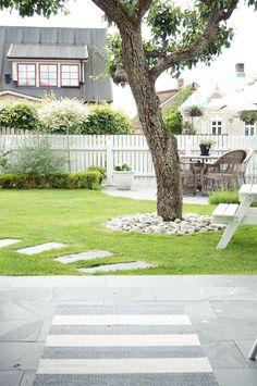 Låt trädgården balansera upp husets kantighet – 5 tips! Garden Fencing, Lawn And Garden, Back Gardens, Outdoor Gardens, Scandinavian Garden, Dream Garden, Trees To Plant, Garden Inspiration, Backyard Landscaping