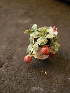 MiniEden: Fresas (Tutorial)
