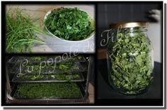 Du 100% naturelle pour agrémenter la cuisine Spices And Herbs, Herbs, Healthy Eating Recipes, Kitchens