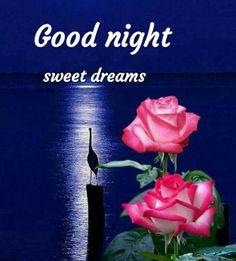 Good Night Sweet Dreams, Good Night Image, Be Nice, Stairway, Good Nite Images