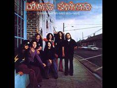 Lynyrd Skynyrd - Freebird Guitar Solo Isolated