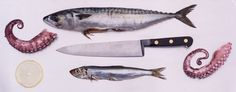 Mackrel, Knife & Sardine Dublin, Dish, Food, Plates, Meals, Yemek, Dishes, Eten