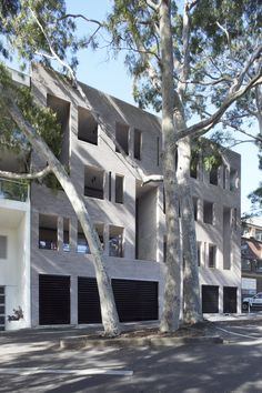 RESIDENTIAL ARCHITECTURE – MULTIPLE HOUSING AWARD - Sydney 385 by Smart Design Studio. Photo by Sharrin Rees.