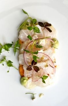 DORADE CEVICHE with WASABI-INFUSED AVOCADO CREAM, RED ONION STRIPS & MICROGREENS [regal] Raw Fish Recipes, Sushi Recipes, Seafood Recipes, Fish And Meat, Fish And Seafood, Nordic Recipe, Sushi Menu, Ceviche Recipe, Dinner Party Recipes