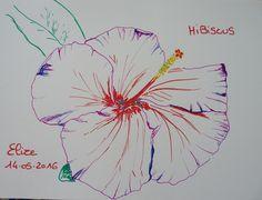 hibiscus, une fleur tropicale. #dessin aux crayons feutres http://www.pigmentropie.fr