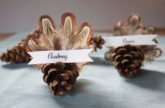 Pinecone Turkey Place Card