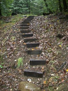 more backyard stairs