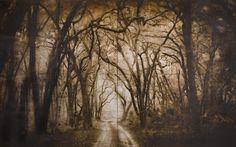 L'Auberge Gothic - John Folsom