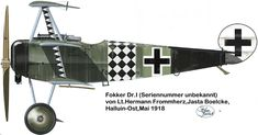 I triplane Fokker Dr1, Aircraft Painting, World War One, Aviation Art, Luftwaffe, Military Aircraft, Fighter Jets, Pilots, Profile