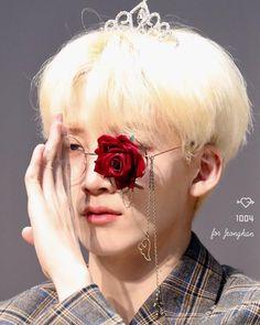 Joshua Seventeen, Seventeen Memes, Jeonghan Seventeen, Woozi, Wonwoo, Blonde Asian, Choi Hansol, Joshua Hong, Pledis 17