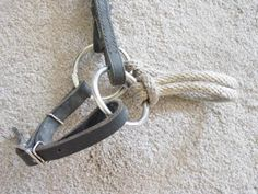 Converting a regular bridle into a bitless bridle.
