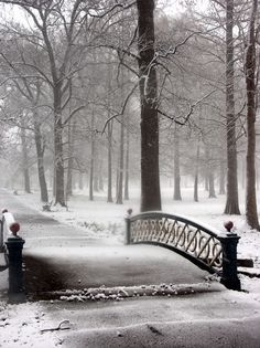 St. Louis, MO - Tower Grove Park bridge  Hope we have time for this.