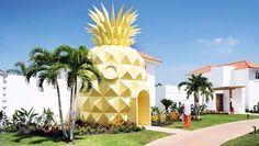À Punta Cana en République dominicaine, on peut se...