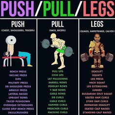 Push/Pull/Legs Weight Training Workout Schedule For 7 Days , Push/Pull/Legs Weight Training Workout Schedule For 7 Days PUSH/PULL/LEGS! If you are doing a push/pull/legs split, you really have lots of options to. Workout Routine For Men, Gym Workout Tips, Weight Training Workouts, Fun Workouts, Workout Plan For Men, Exercise Schedule, Gym Workouts For Men, List Of Exercises, Workout Routines