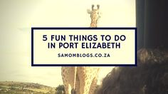 There are a lot of fun things to do in this coastal town. Ella shares her 5 fun things to do in Port Elizabeth Port Elizabeth, South Africa, Stuff To Do, Things To Do, Things To Doodle, Things To Make
