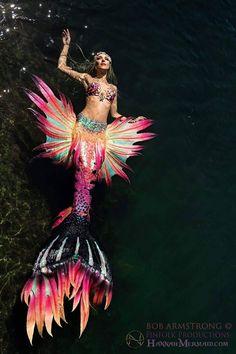 Mermaid Tail by Hannah Fraser and Finfolk Photo by Bob Armstrong Mermaid Board, Mermaid Cove, Mermaid Man, Mermaid Fairy, Fantasy Mermaids, Real Mermaids, Mermaids And Mermen, Mermaid Cosplay, Mermaid Costumes