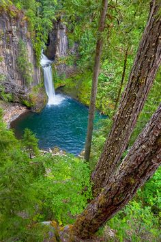 Some of my favorite falls in Oregon! ~~Deep in the Woods ~ waterfall, Toketee Falls, North Umpqua River at its confluence with the Clearwater River, Oregon by Ken Smith~~