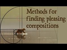"""In this video tutorial you'll see methods for finding pleasing compositions.""  Methods for finding pleasing compositions 