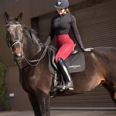 """6d2a88515e Black Heart Equestrian on Instagram  """"Burgundy and black 🤤♥ 🖤 This combo  is the dreamiest and this horse is the cutest (after Gee) ✨"""""""